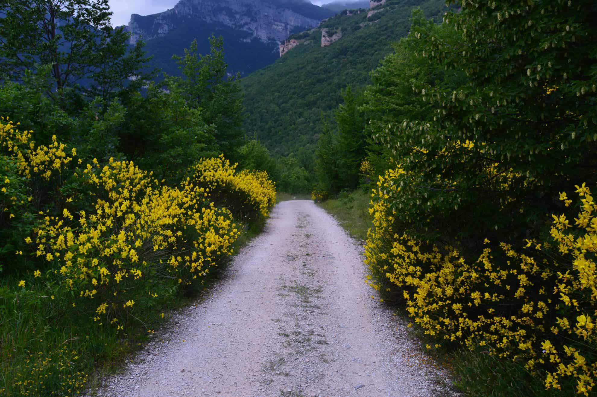 Sentiero per l'Eremo di Soffiano - Itinerari escursionistici Sarnano