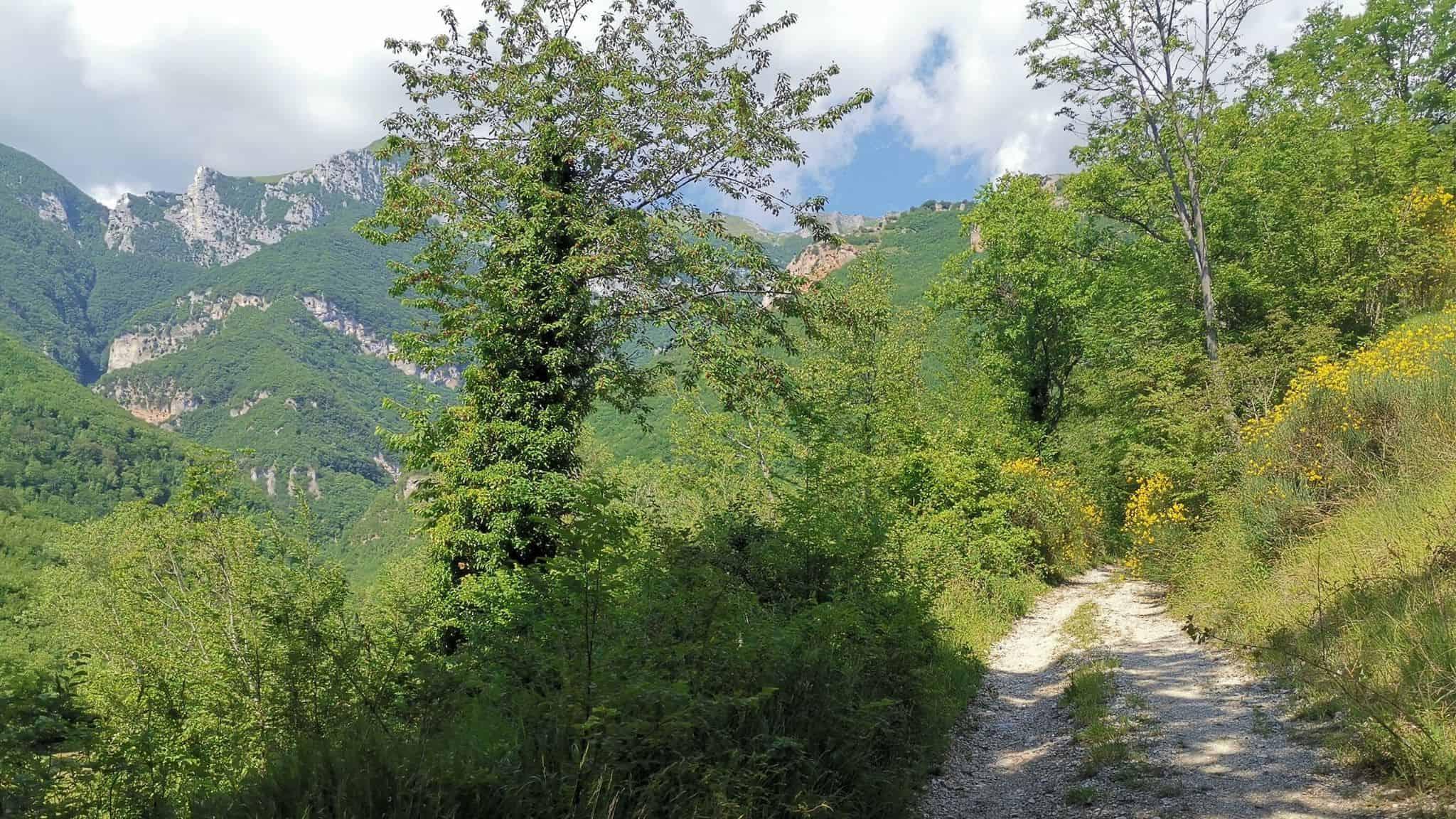 Escursione Valle del Rio Terro e Cascata di Soffiano - Sarnano